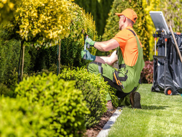3 rainy day best practices for lawn care and landscaping companies